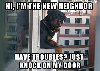 neighborhood_security_dog