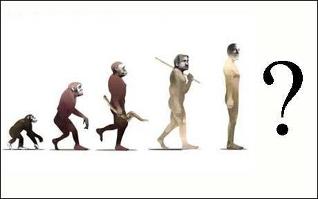 evolution_
