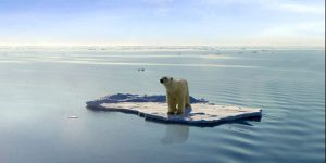 Polar-bear-climate-change-global-warming