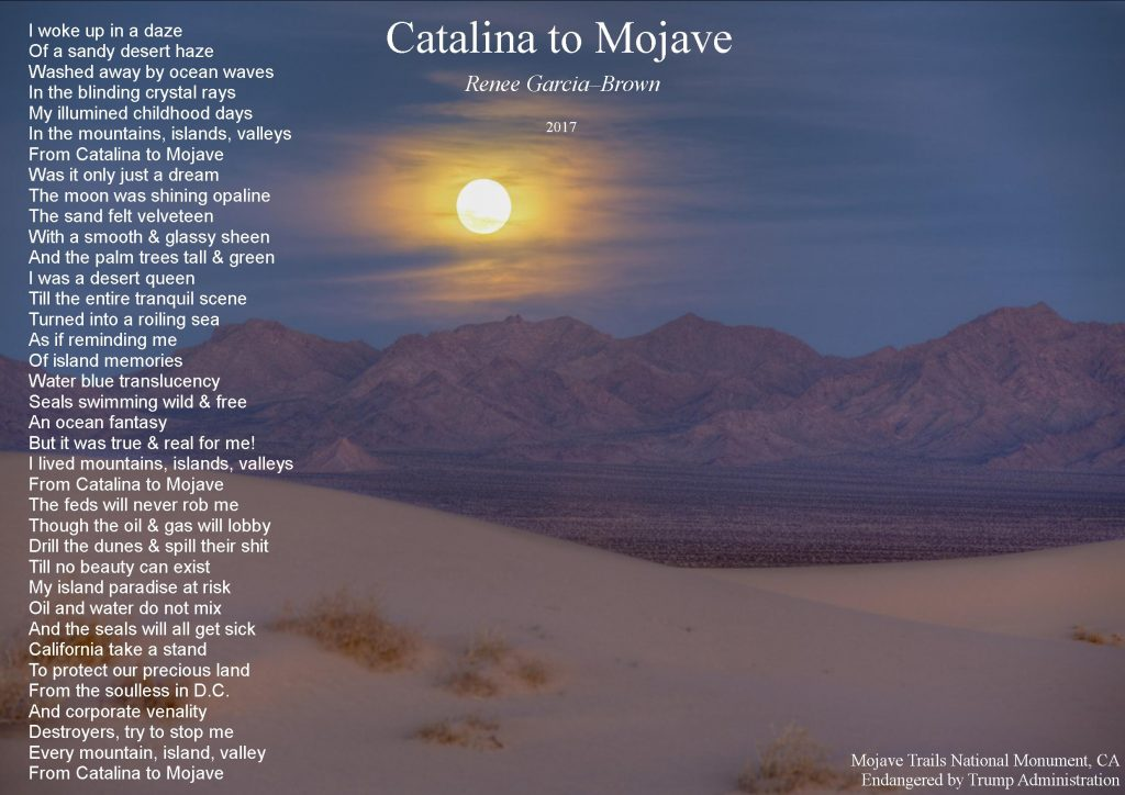 catalina to mojave